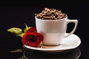 Hintergrundbilder Kaffee Rosen Tasse Becher Getreide Blumen