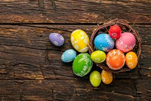 Photo Easter Eggs Multicolor