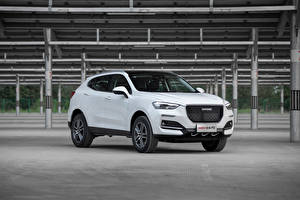 Pictures Haval White Metallic CUV Chinese F5, 2018