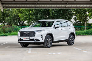 Wallpapers Haval White Metallic CUV Chinese H6 (B01), 2020 -- Cars
