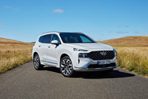 Pictures Hyundai White Metallic CUV Santa Fe Highlander, AU-spec (TM), 2020 -- Cars