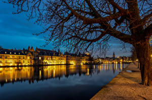 Wallpaper Netherlands Evening Building Pond Waterfront Trees Hofvijver, The Hague