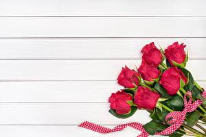 Pictures Rose Red Wood planks Template greeting card Flowers