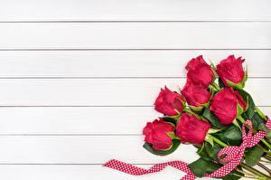 Sfondi desktop Rosa Rosso Tavole Modello biglietto di auguri Fiori