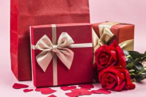 Photo Roses Valentine's Day Bowknot Present Heart flower