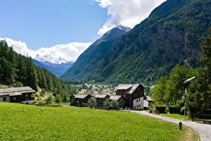 Wallpaper Switzerland Houses Mountain Forest Alps Village Grass village Randa Cities
