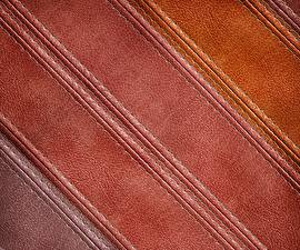 Pictures Texture Leather
