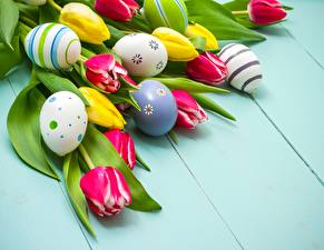 Picture Tulips Easter Eggs