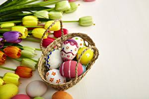 Images Tulips Easter Eggs Wicker basket flower