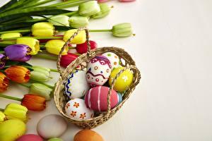 Bilder Tulpen Ostern Ei Weidenkorb