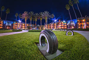 Picture USA Disneyland Park Houses California Anaheim Design HDR Night time Palm trees Tire Cities