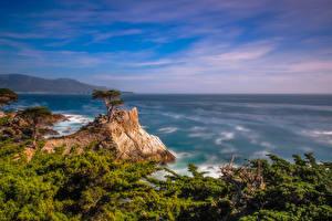 Hintergrundbilder Vereinigte Staaten Ozean Küste Kalifornien Felsen Pebble Beach