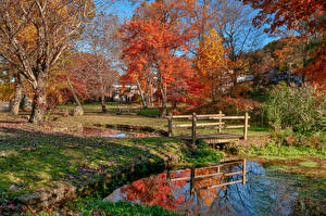 Pictures USA Parks Autumn Pond Bridge New York City Trees Gerry Park Roslyn