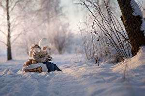 Pictures Winter Boys Snow Sledge Blurred background Sitting Children Nature