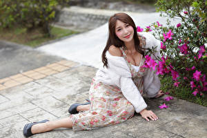 Papel de Parede Desktop Asiático Bokeh Castanhos Sorrir Vestido Sentados Ver Meninas
