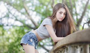 Bilder Asiaten Bokeh Pose Braunhaarige Starren Shorts Mädchens