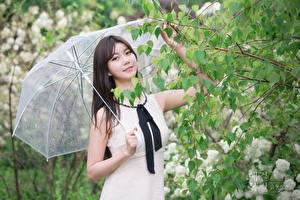 Wallpapers Asiatic Branches Brunette girl Staring Hands Parasol