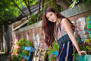 Sfondi desktop Asiatico Ragazza capelli castani Abito Sguardo Braccia Bokeh giovane donna