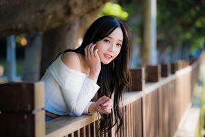 Desktop hintergrundbilder Asiatische Brünette Starren Hand Unscharfer Hintergrund Zaun junge Frauen