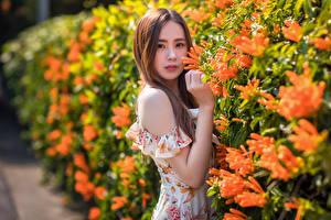 Bakgrunnsbilder Asiatisk Kjole Hender Bokeh Blikk ung kvinne