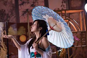 Bilder Asiaten Gestik Regenschirm Brünette Hand Mädchens
