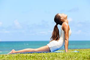 Fondos de Pantalla Asiático Hierba Yoga Ejercicios de estiramiento Chicas imágenes