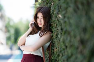 Sfondi desktop Asiatici Arbusti Bokeh Colpo d'occhio Ragazza capelli castani Le mani giovani donne