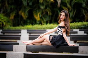 Hintergrundbilder Asiaten Sitzt Bein Starren Bokeh Braunhaarige Mädchens