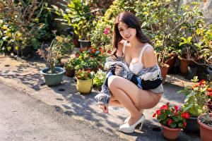 Fotos Asiatische Sitzend Pose Starren junge Frauen