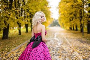 Bilder Herbst Bokeh Blondine Starren Schleife junge Frauen
