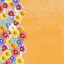 Hintergrundbilder Gänseblümchen Gezeichnet Bunte Vorlage Grußkarte