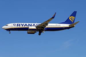 Hintergrundbilder Boeing Flugzeuge Verkehrsflugzeug Seitlich 737-800W, Ryanair Luftfahrt