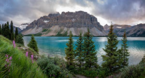 Desktop wallpapers Canada Mountains Lake Clouds Bow Lake Nature