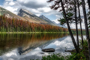 Hintergrundbilder Kanada Berg See Bäume Honeymoon Lake, Alberta Natur
