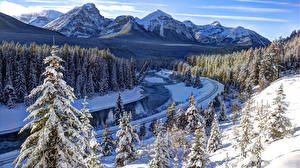 Wallpapers Canada Winter Mountain Forests Parks Landscape photography Banff Snow Alberta