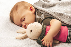 Wallpapers Hares Toy Infants Sleeping