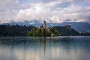 Hintergrundbilder Slowenien Insel See Turm Bled, Upper Carniolan Natur