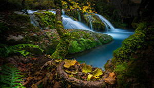 Pictures Spain Waterfalls Autumn Moss Foliage Cascada de Saseta Nature