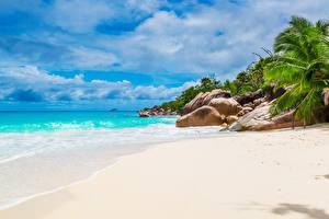 Image Stones Tropics Sea Beach Sand Palms Seychelles Nature