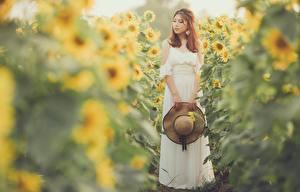 Fotos Sonnenblumen Asiatisches Bokeh Kleid Der Hut junge Frauen