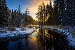 Photo Sunrises and sunsets Winter Forests Rivers Snow Reflection Nature