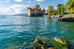 Fotos Schweiz Burg See Stein Laubmoose lake Geneva Chillon castle Städte Natur