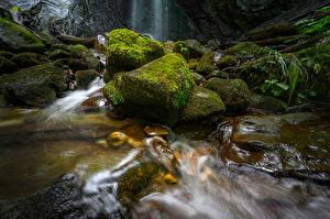Papéis de parede Suíça Queda de água Pedras Musgos Finstersee Waterfall Naturaleza imagens