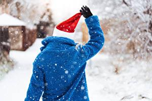 桌面壁纸,,冬季,雪,後視圖,保暖帽,的毛皮大衣,手,手套,