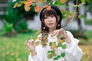 Fotos Asiatisches Bokeh Ast Hand Barett Blick Mädchens