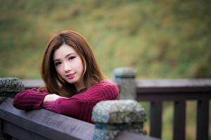 Photo Asian Bokeh Brown haired Glance Sweater young woman