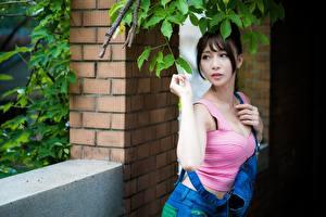 Fotos Asiaten Ast Brünette Blick Hand
