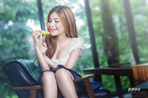 Pictures Asian Brown haired Smile Hands Sitting Bokeh Girls