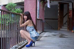Fotos Asiatisches Zaun Bokeh Brünette Blick Sitzen Bein Mädchens
