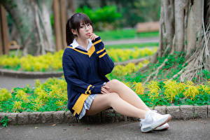 Pictures Asiatic Sitting Legs Sweater Glasses Glance Girls